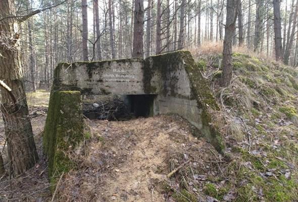 Kujawsko-pomorskie: Pierwsze badania archeologiczne na S10 Toruń – Bydgoszcz