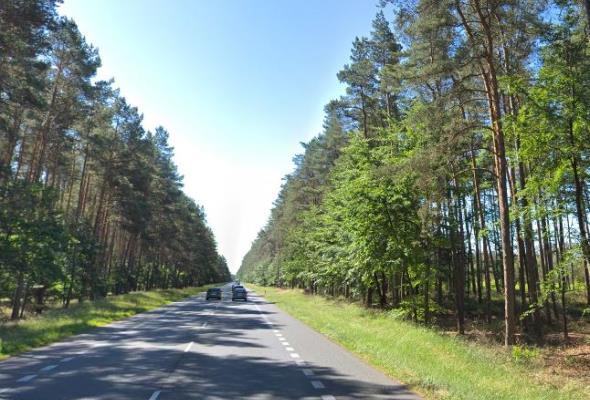 Ruszyła budowa S3 na północ od Szczecina