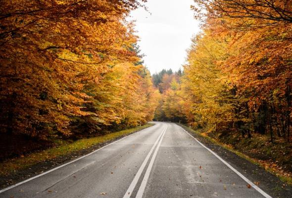 Olsztyn: przetarg na remont dróg powiatowych