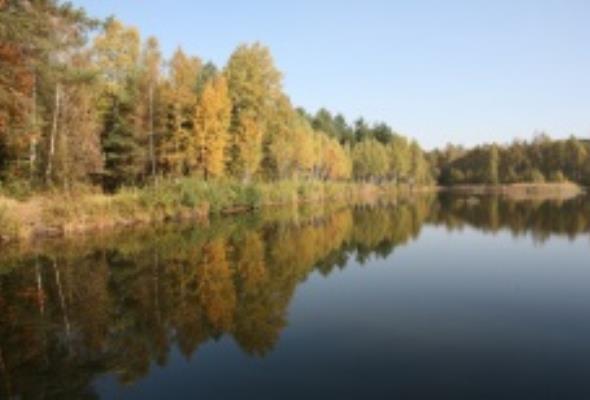 Most nad rzeką Potok Leśniówka. Opracowanie dokumentacji