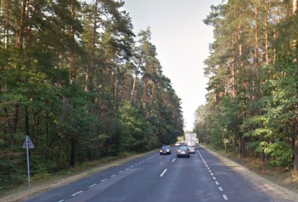Oczyszczona woda z dróg będzie wykorzystana w lasach