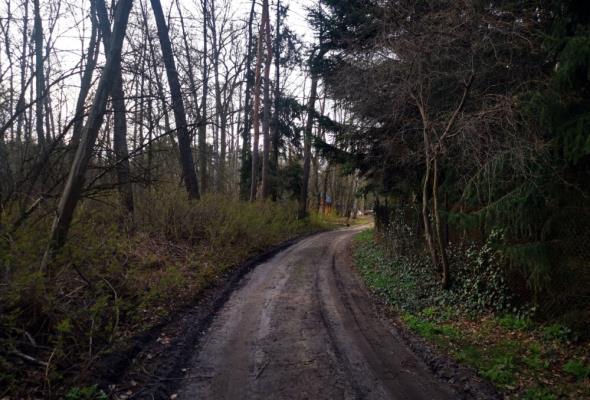 Łódzkie: Województwo wsparło modernizację dróg na wsiach