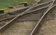 PKP PLK zrewitalizuje linię nr 353 w Wielkopolsce