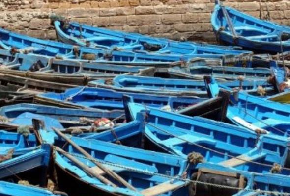 SLD o gospodarce morskiej