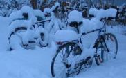 Warszawa odśnieży drogi rowerowe. Przynajmniej w części