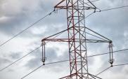 Grupa Energa 2011: Wyższy przychód, zysk i EBIDTA