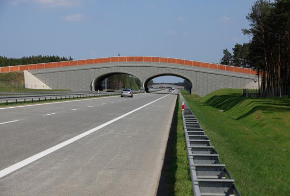 SPC: W Polsce musi być miejsce dla dróg betonowych i asfaltowych