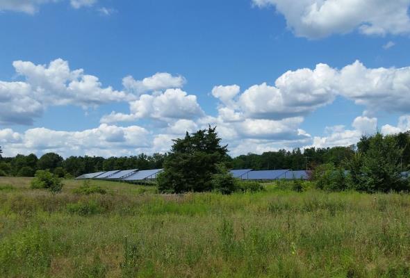 NFOŚiG: 33 mln zł na OZE i efektywność energetyczną