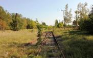 Przasnysz czeka na wznowienie przewozów z Ostrołęki do Wielbarka. Środki na modernizację już są