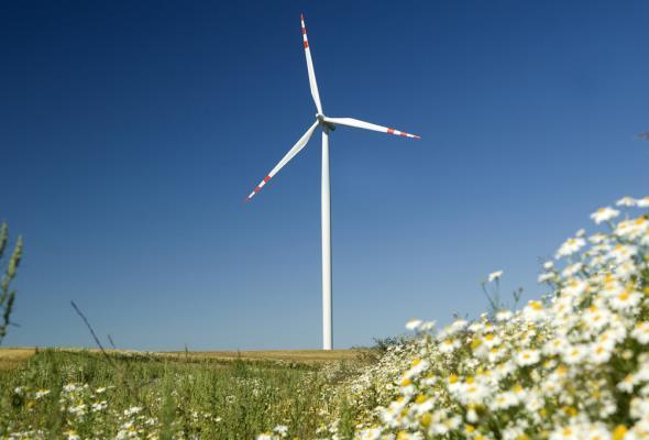 17 mln euro wsparcia na produkcję energii z odnawialnych źródeł energii