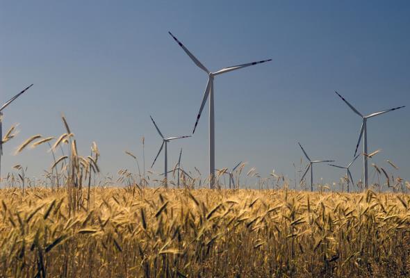 Farma Wiatrowa Przykona: 13 chętnych na współpracę