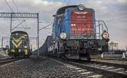 PLK modernizuje infrastrukturę portach Szczecin i Świnoujście