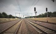 Przetarg na modernizację sieci trakcyjnej między Żarowem a Imbramowicami