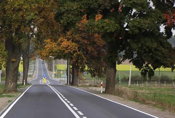 ZDW Olsztyn: Dwa pomysły na ochronę przed skutkami uderzenia w drzewo do testów