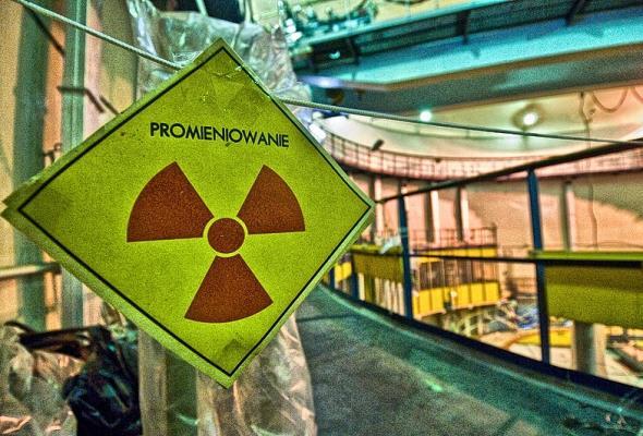 Krajowy przemysł w polskim projekcie jądrowym