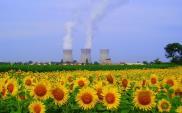 Ministerstwo Energii: 61% Polaków popiera budowę atomówki