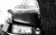 MIR na rzecz poprawy bezpieczeństwa ruchu drogowego