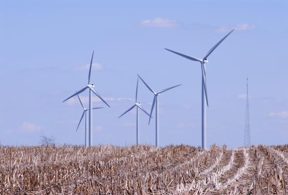 Margonin: Jak wiatraki stały się lokalną atrakcją