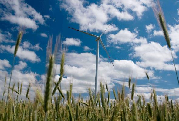 TPA Horwath: Ustawa odległościowa zniszczy branżę wiatrową
