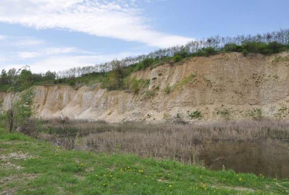 Kamieniołom Lipówka miejscem nie tylko proekologicznych inicjatyw