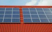 Polacy coraz częściej inwestują w zieloną energię