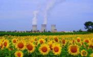 Krok naprzód w polskim programie jądrowym