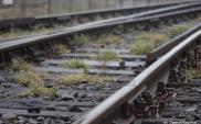 Fatalny stan torowisk linii Nysa – Brzeg [ZDJĘCIA]