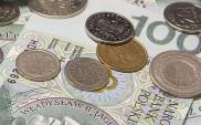 Wysoka dynamika wzrostu przychodów w DUON