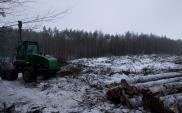 Zachodniopomorskie: Ruszają pierwsze prace na S6 Goleniów – Koszalin