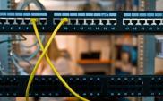 Zwiększa się zapotrzebowanie na systemy i usługi IT