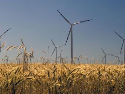 Energia wiatrowa: Tak – dla transparentnych procedur, nie – dla restrykcji i fiskalizmu